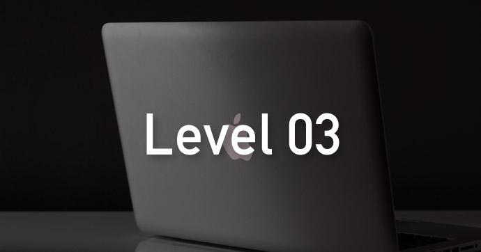 Skill Level 03